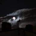 Ksiezyc-noca_2
